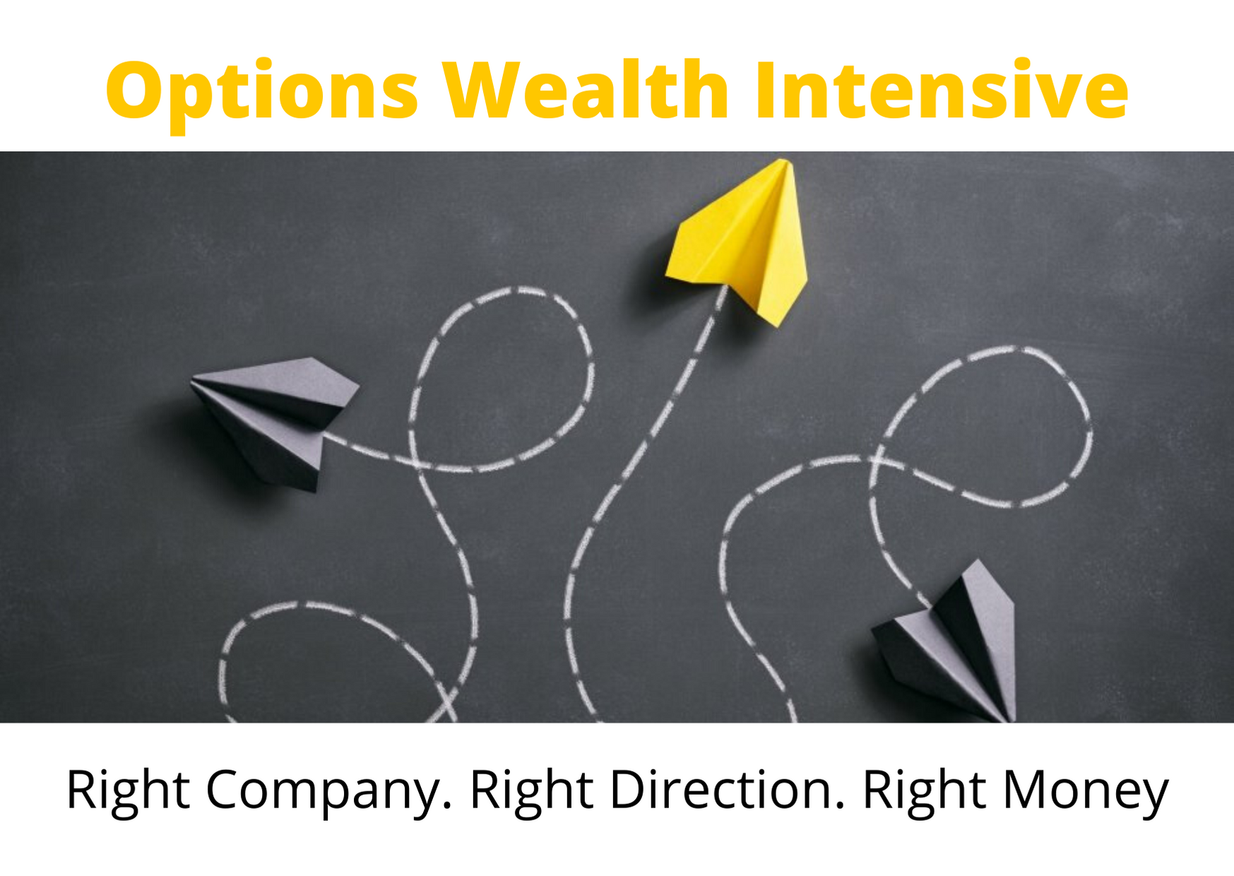 Options Wealth Intensive