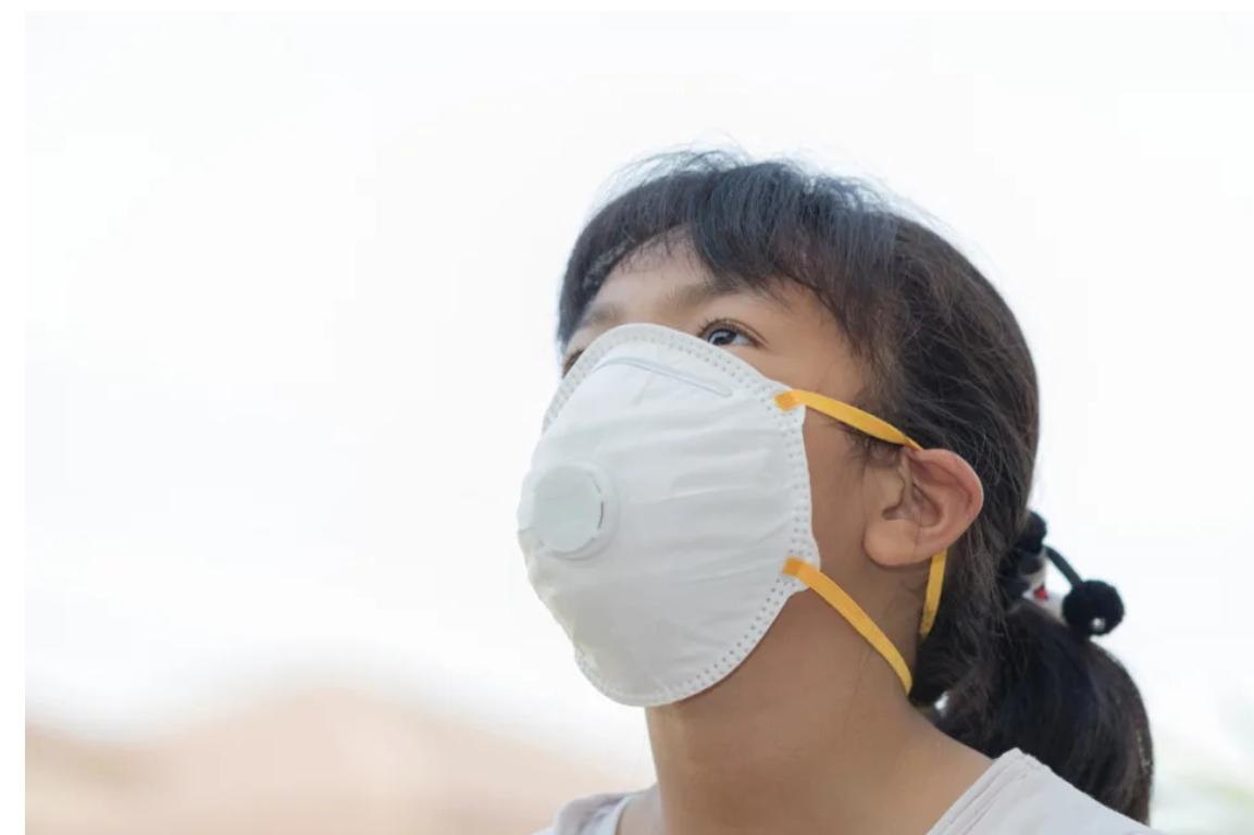 2019 CNOV Coronavirus N95 Mask